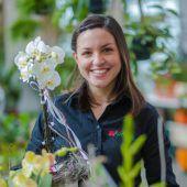 Leidenschaft für Blumen und Gartenarchitektur