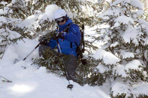 Jung- oder Schutzwälder sind für Wintersportler tabu.  Foto: vN