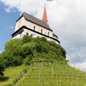 Neuer Pächter für Weingarten  bei der Basilika