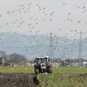 Beim Bodenschutz hält sich die Gesetzeswut in Grenzen
