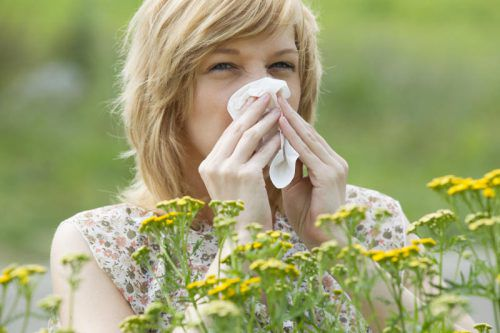 Alles, was in der Luft liegt, kann die Lunge belasten. Dazu gehören auch Pollenallergien, die unbehandelt zu Asthma führen können.