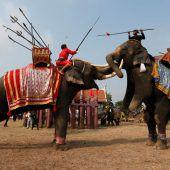 Thailand feiert seine Elefanten