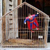 Superman im Vogelkäfig