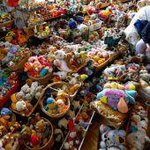 20.000 Stofftiere gesammelt