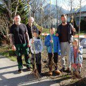 112 neue Bäume für Dornbirn