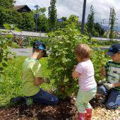 Gartenprojekt in Lauterach wird im April fortgesetzt