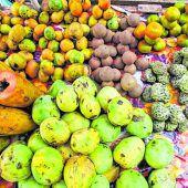 Früchte frisch vom Baum