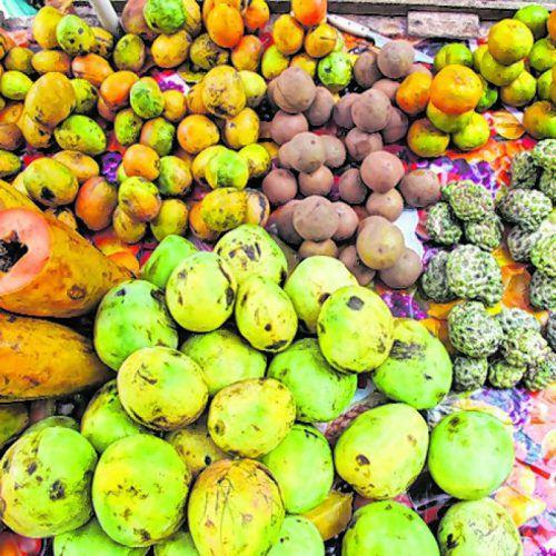 Überall bekommt man die süßen, frisch gepflückten Früchte.