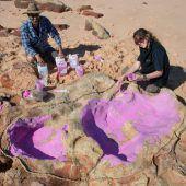 Wissenschaftler finden Tausende Dinospuren