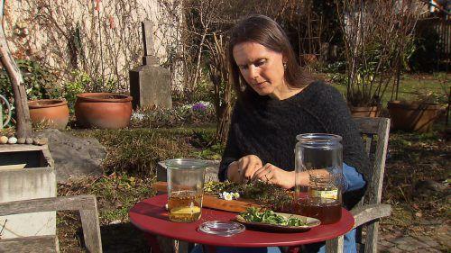 Angelika Feistenauer demonstriert ihr Kräuterwissen. Foto: ORF