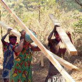 Ein Tag für Tansania auf Falkenhorst