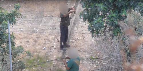 """""""Die Jagd ist zum Wirtschaftsfaktor geworden, es handelt sich im Grunde um organisierte Kriminalität"""",sagt Tassos Shialis von Birdlife."""