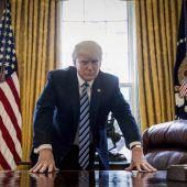 Trump seit 100 Tagen US-Präsident