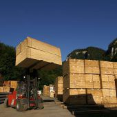 Mehr als genug Holz für Wohnbau