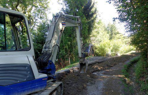 Dornbirn führt trotz Krise Kanalbau in den Bergparzellen zu Ende.STD