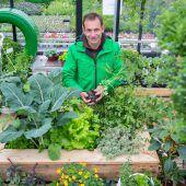"<p class=""caption"">Andreas Dür weiß genau, wie man sich einen schönen Gemüsegarten zaubert. Foto: VN/Hartinger</p>"