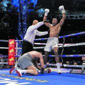 Joshua auf dem Weg zum Superstar im Boxgeschäft