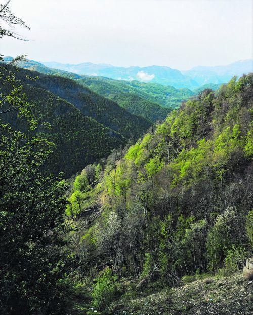 Berge, Schluchten und dichte Wälder prägen das Landschaftsbild von Montenegro im Landesinneren. Fotos: Beate Rhomberg
