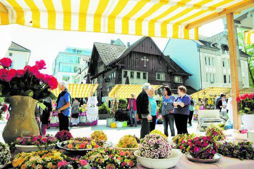 Den Dornbirner Gartentag besuchen und eine Robin Hood zum Vorteilspreis kaufen.  Foto: DornbirnTourismus&StadtmarketingKoju