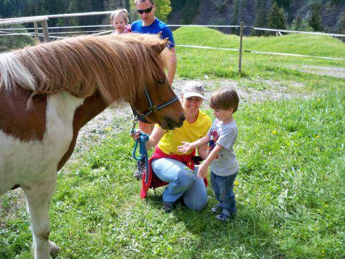Die Kinder lernen im Ebnit Isländerpferde kennen. Foto: cth