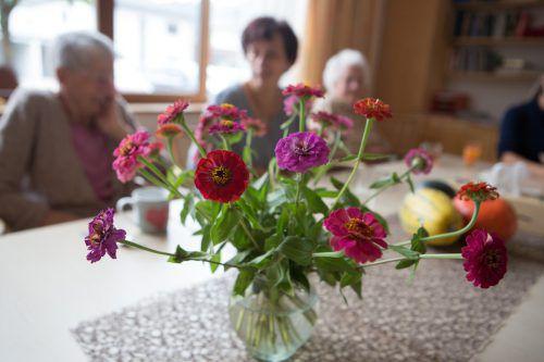 Die Pflege umfasst sehr viele Facetten. Foto: vn/hartinger