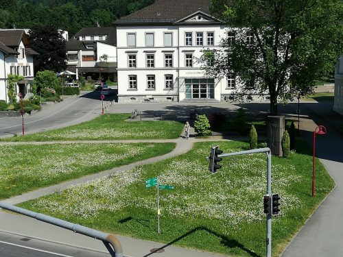 Farbenfroh zeigt sich die Blumenwiese im Zentrum von Götzis. Foto: doh