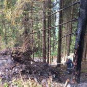 Waldbrand sorgt für einen Großeinsatz