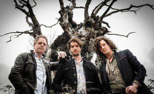 """Mit ihrem im September 2016 veröffentlichten Album """"Shake the Tree"""" ist The Brew auf großer Europatournee.               foto: Tony Mottram"""