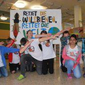Mittelschüler wollen Wildbienen helfen