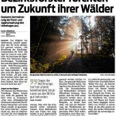 Reform des Forstdienstes