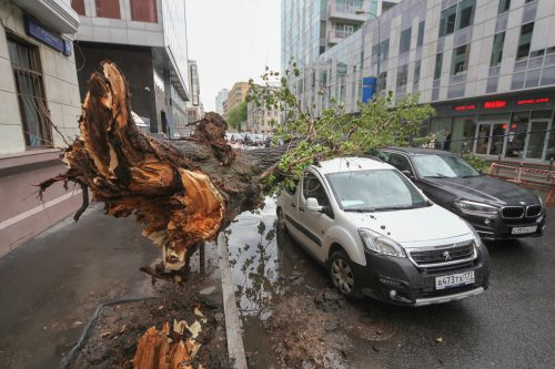 Zahlreiche Dächer und Autos wurden zerstört. Foto: ap