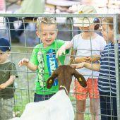 Tierausstellung in Höchst lockte 5000 Besucher