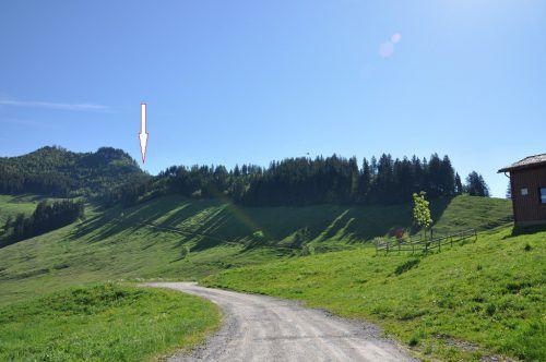 Zum tragischen Unfall kam es auf dem südlichen Ausläufer der Staufenspitze in Hohenems. Foto: Polizei