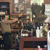 Pfau besucht Weinhandlung
