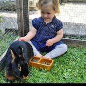 Kleintierzuchtverein feiert