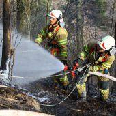Feuerwehr übt Szenario Waldbrand