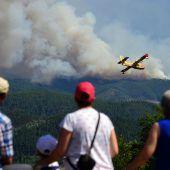 Fortschritte bei Waldbrandbekämpfung