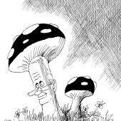 Aussterbende Pilz-Sorte!