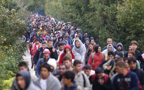 Flüchtlinge im September 2015: Auf dem Weg vom ungarischen Hegyeshalom ins burgenländische Nickelsdorf. Foto: REUTERS