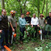 Eine Pflegeoffensive für den Wald