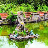 Ein Garten mit mediterranem Flair