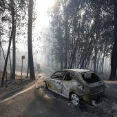 Waldbrände in Portugal fordern Dutzende Tote