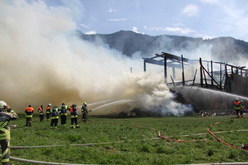 150 Feurwehrleute bekämpften den Brand des Stallgebäudes in Nenzing, für ein Kälblein kam jedoch jede Hilfe zu spät. Foto: vol.At/Madlener