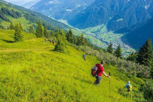 Acht Tage lang waren die Suchtrupps in steilem und unwegsamem Gelände im Gebiet um den Hochmaderer in Gaschurn unterwegs.