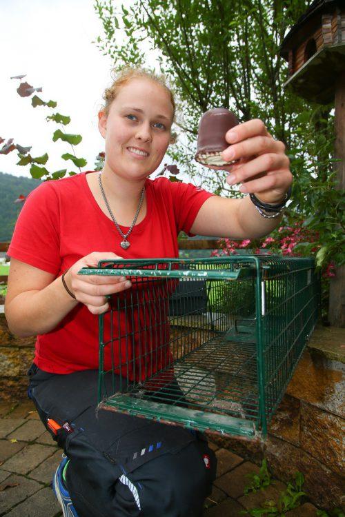 Annika Machnik packt einen Schokokuss in die Marderfalle, damit werden die Tiere angelockt. Foto: VN/Hofmeister
