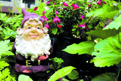 Auch wenn er nicht jedermanns Geschmack ist, der Gartenzwerg darf bleiben. Foto: Shutterstock
