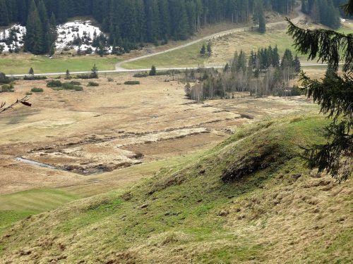 Bis in die 70er-Jahre des vorigen Jahrhunderts prägte der Abbau von Torf das Leben der Gemeinde. Spuren davon sind noch vorhanden.