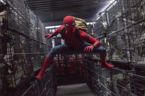 """Der erst 21-jährige Tom Holland macht in """"Spider-Man: Homecoming"""" eine ziemlich gute Figur. Foto: ap"""