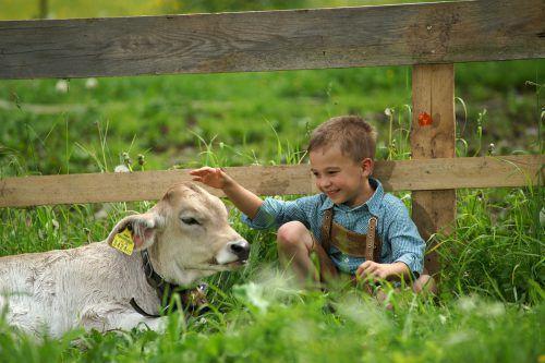 Der Sommerurlaub am Bauernhof wird immer beliebter und ist auch leistbar. Foto: Berchtold
