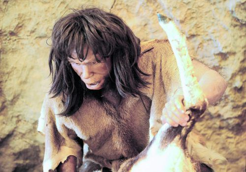 Die Beziehung zwischen Menschen und Neandertalern war offenbar komplexer als bisher vermutet. Die Analyse eines Oberschenkelknochens von der Schwäbischen Alb liefert überraschende Befunde.Foto: APA